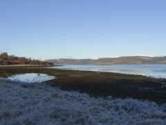 Starfish Dogs-welcome Cottage, Central Scotland  - Argyll and Bute