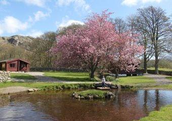 Fisherground Lodges  - Eskdale,