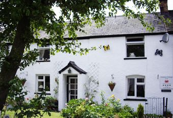 Ty Gwyn Cottage with all weather Hot tub.  - Llanarmon Dyffryn Ceiriog,