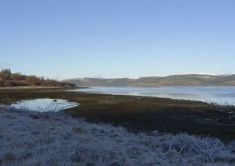 Starfish Dogs-welcome Cottage, Central Scotland   - Salen,