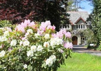 Stapledon Lodge Dogs-welcome Cottage, South West England   - East Anstey,