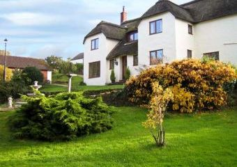 Shells Dogs-welcome Cottage, South West England   - Lower Washford,