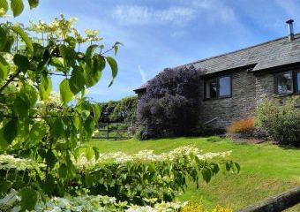 Honeysuckle, dog friendly couples' cottage in South Devon  - Dartmouth,