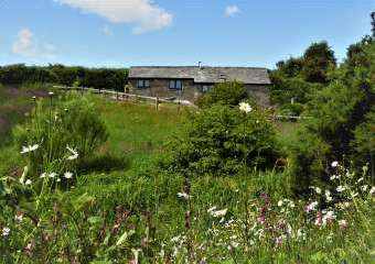 Honeysuckle, dog friendly couples' cottage in South Devon  - Dartmouth,