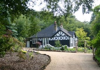 Blackdown Country Cottage  - Burwash,