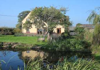 Oak tree cottage  - Whitchurch,