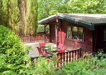 Skiptory Woodland Holiday Lodge  - White Cross Bay,