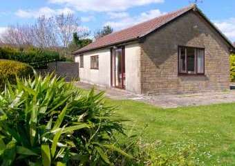 Ryecross Rural Retreat near Shaftesbury  - Shaftesbury,
