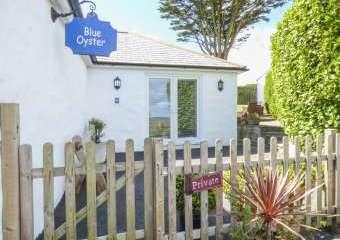 Blue Oyster Romantic Retreat  - Mullion,