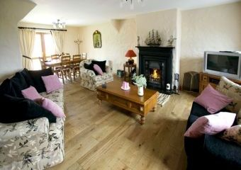 Dog-Friendly Cottage near the Dingle Peninsula  - Castlegregory,