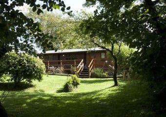 Rural Retreat Log Cabin  - Newcastle Emlyn,
