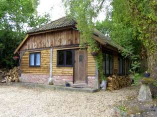 Endymion Pet-Friendly Cabin, New Forest National Park