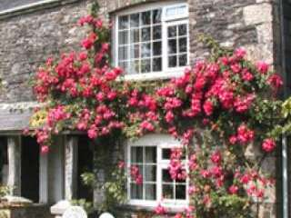 Beautiful country cottage in Cornwall by Looe.