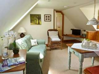 Woodpecker Loft Dogs-welcome Cottage near Exmoor National Park