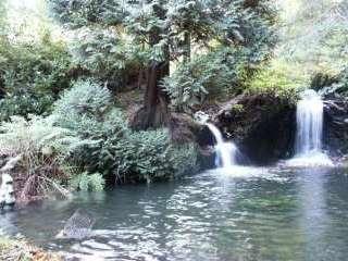 Woodland Waterfalls