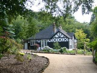 Blackdown Country Cottage - Sussex