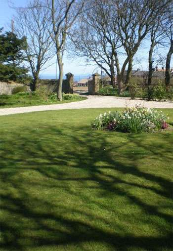 Dog friendly cottages whitby north yorkshire