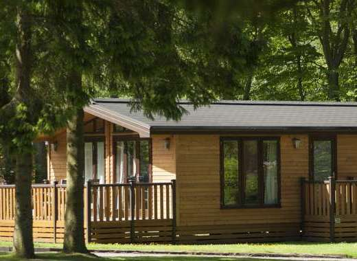 Our woodland lodges
