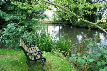 Somerset self-catering cottage - fishing