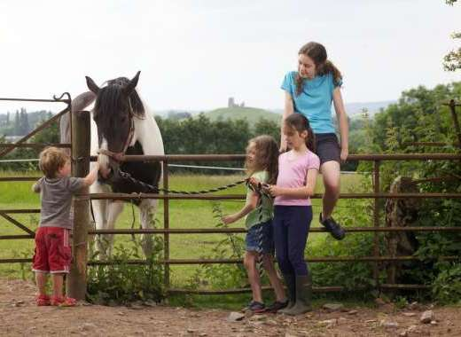 Kids Playing with Loppy our horse at Walkers Farm Cottages