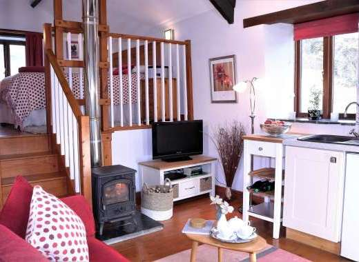 Cottage for two guests at Dittiscombe