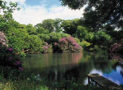Ornamental Lakes at The Devon Manor House