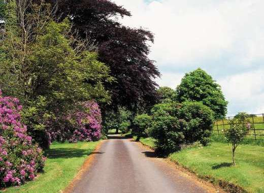 Private Driveway For The Devon Manor House