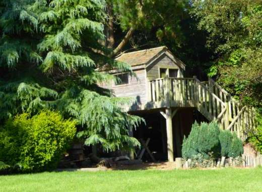 Explore the gardens at Malston Mill