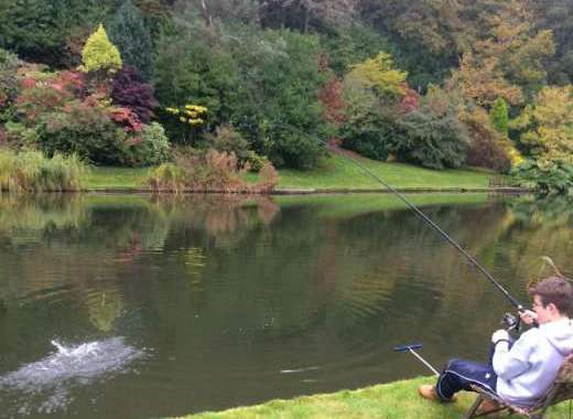 Enjoy fishing at Malston Mill
