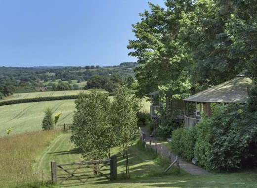 tree house living scenic countryside accommodation