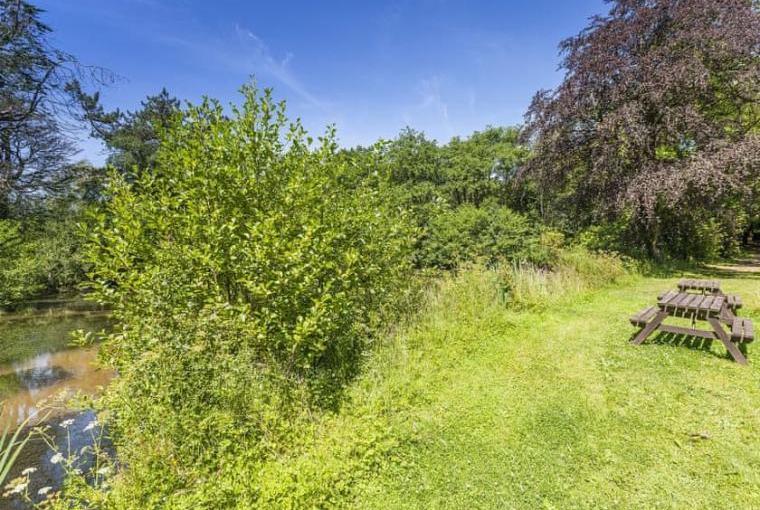 Gamekeeper's Hide on the Colmer Estate, Somerset, Photo 29