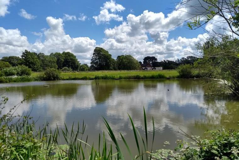 Briarcroft Fishery Lodge, Lancashire, Photo 26