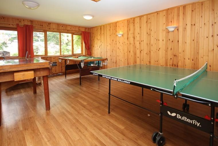 Self Catering games room