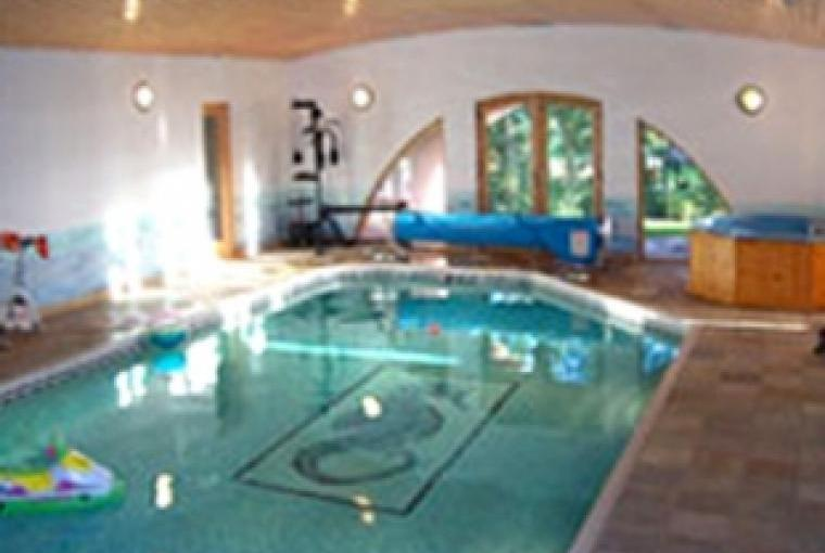 Owner's indoor swimming pool