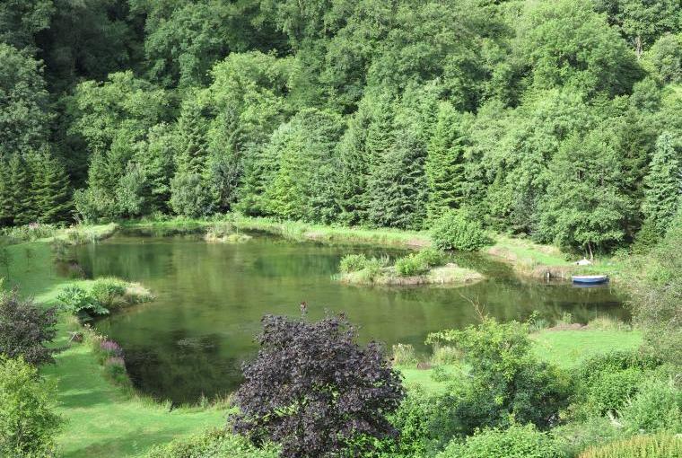 Upper lake at Oakmead