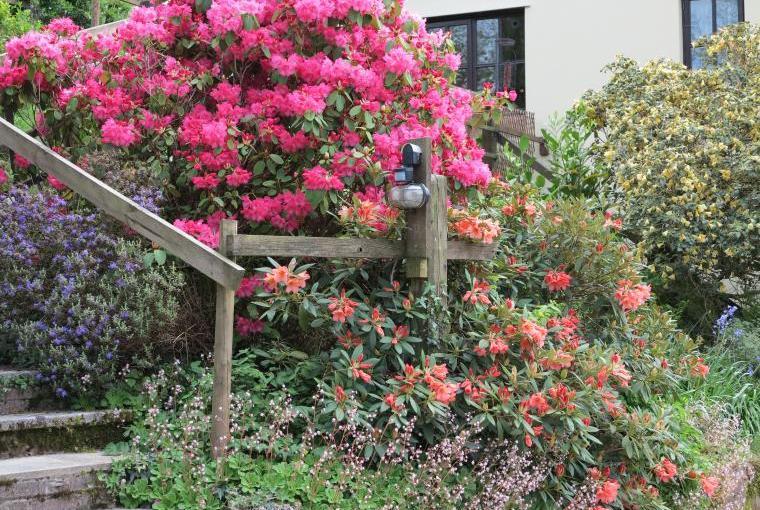 Beautiful Gardens at Acorn Retreat