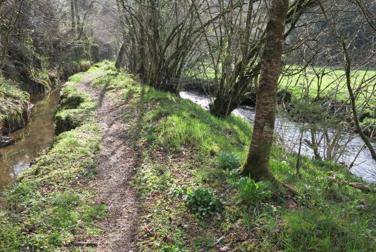 Along the leat path