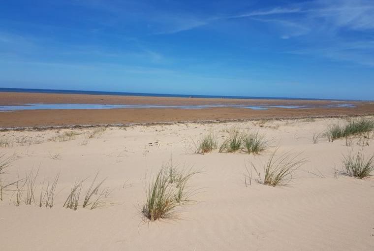 Holme beach - tide out