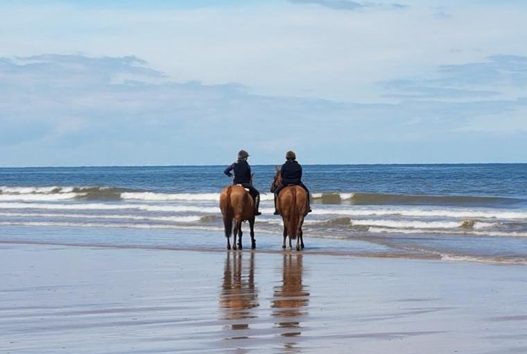 Horses on beach at Holme