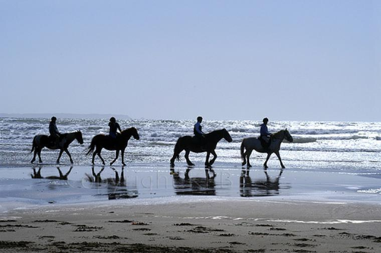 Horseriding on Newport Beach