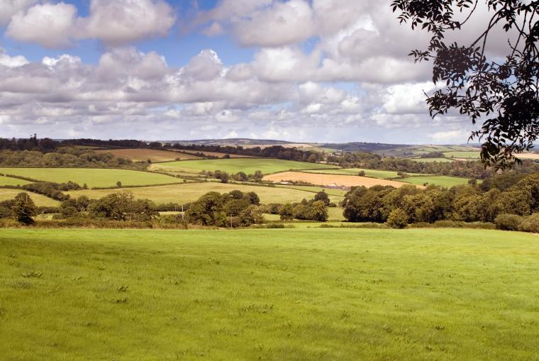 Country views at Three Gates Farm