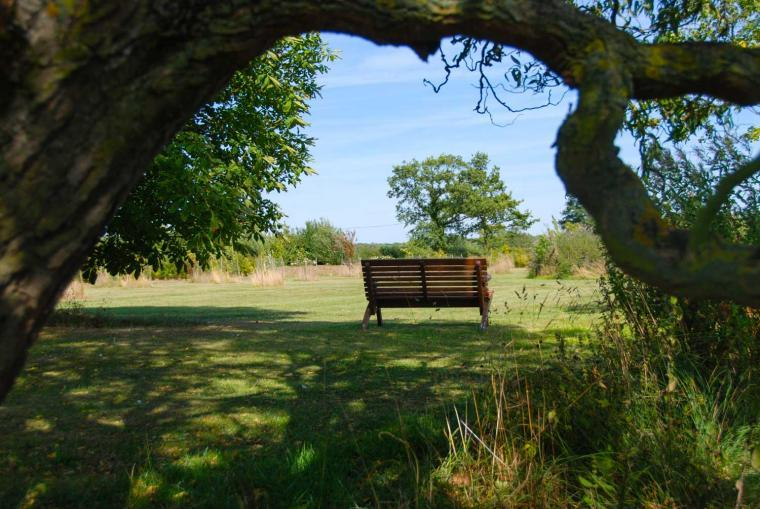 your own private orchard and dog exercise area