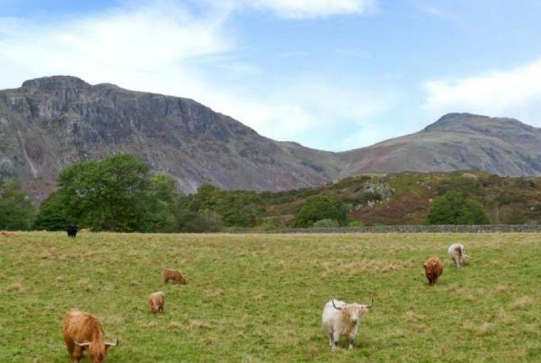 Stunning countryside by Raceside Farmhouse, Cumbria