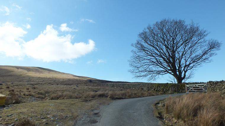 Woodend Bothy, Cumbria, Photo 18
