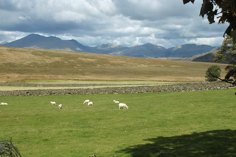 Woodend Bothy, Cumbria, Photo 22