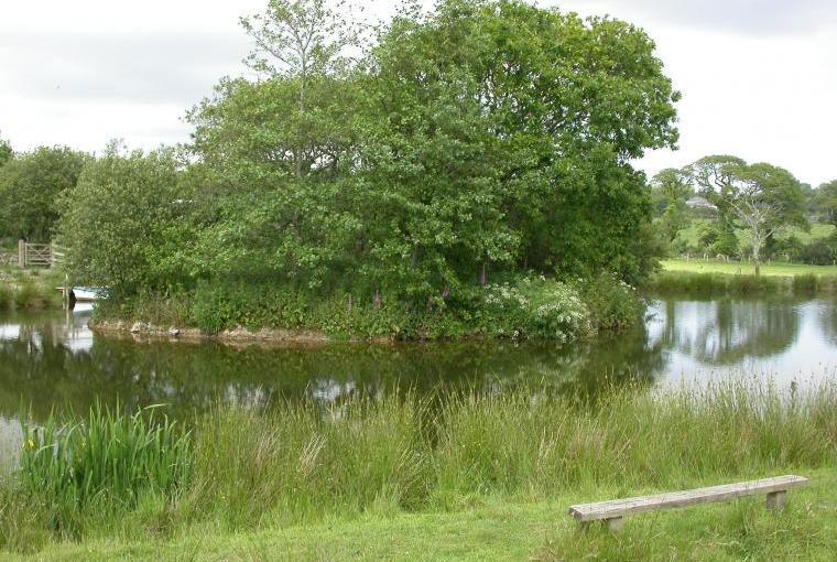 Fishing lake at Poltarrow