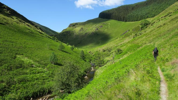 Cambrian Mountains Walk