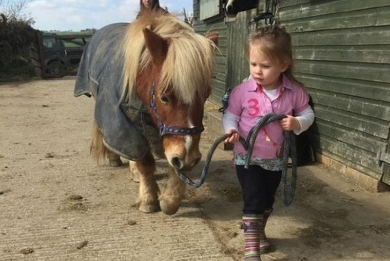 Timmy the Pony