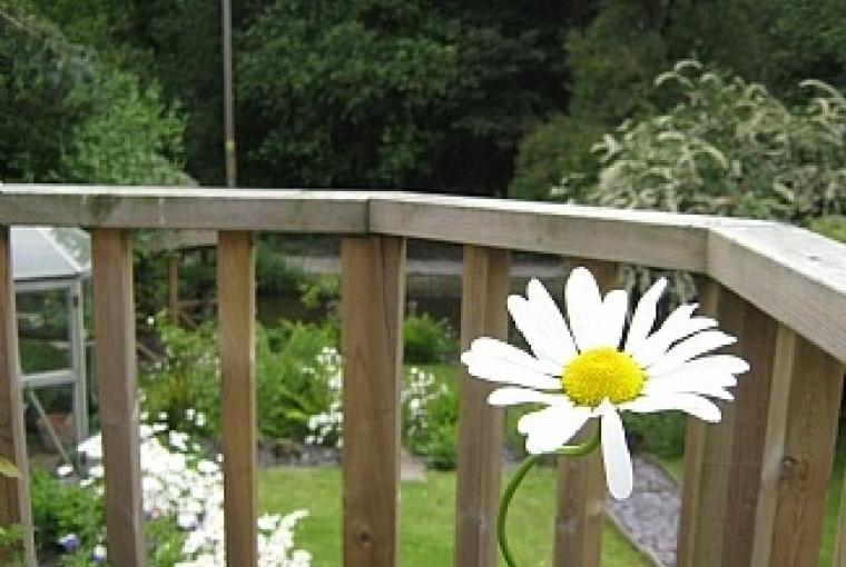Daisy Canalside Cottage, Staffordshire, Photo 12