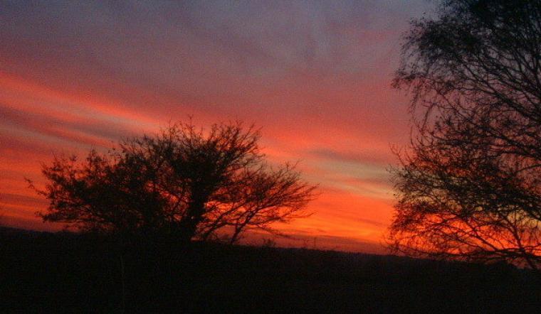 Sunset at Beechwood Cottage